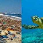 Foto: Alarmant! Plajele din Seychelles, invadate de tone de deșeuri din plastic