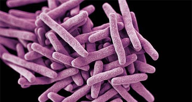 Un supermicrob letal se răspândește global și îi pun în alertă pe specialiști