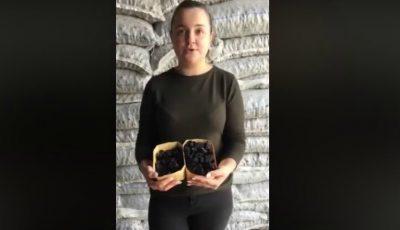 O tânără agricultoare din Moldova are câteva zeci de tone de prune uscate. Să-i susținem pe producătorii autohtoni!