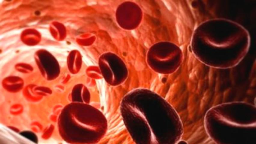 """Foto: Medic: ,,Cu toţii facem cancer în fiecare zi, dar sistemul imunitar ne salvează"""""""