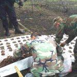 Foto: Un moldovean a găsit peste 5.000 de muniții în timp ce săpa în grădină