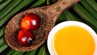 Uleiul de palmier este periculos sau benefic pentru sănătate?