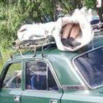 Foto: Caz șocant în Rusia. O femeie decedată a fost transportată la morgă pe acoperișul unui vehicul