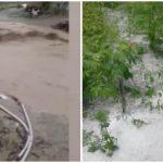Foto: Imagini de coșmar în sudul țării. Un strat de gheața a acoperit pământul, iar drumurile din sate s-au transformat în râuri