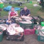 Foto: Zeci de tone de pește contaminat cu plumb sau mercur a fost vândut în magazine