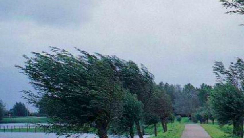 Foto: Atenționare meteo! Cod galben de vânt puternic, începând cu ora 18.00