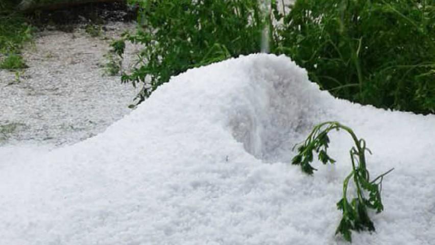 Troiene de grindină s-au format la Briceni. Foto