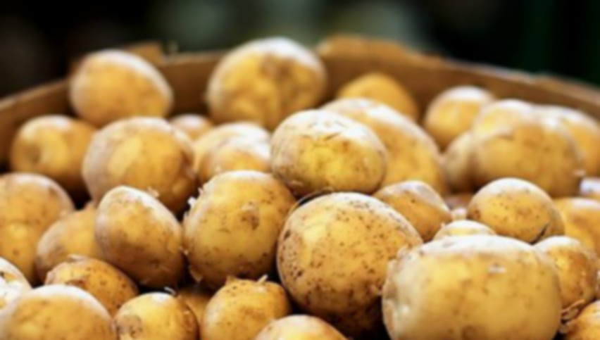 Foto: ANSA explică majorarea prețurilor la cartofi, în Moldova