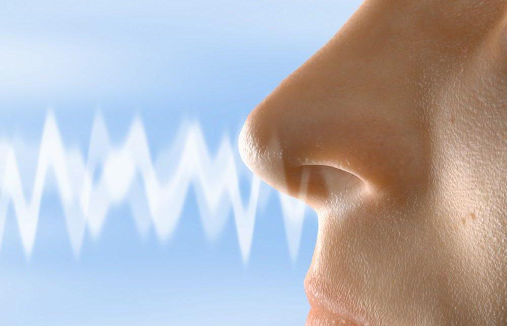 Foto: Un simţ al mirosului slab dezvoltat poate fi corelat cu un risc mare de deces