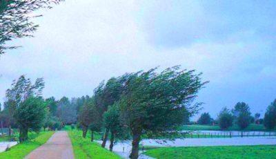 Cod galben de vânt puternic în toată țara! Vezi când intră în vigoare avertizarea meteo