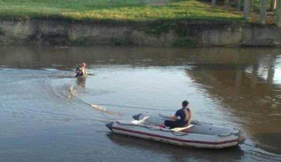 Fetița de 12 ani, dispărută în râul Răut, a fost găsită la 5 km de locul nenorocirii