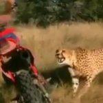 Foto: Este incredibil ce face această tânără! Videoclipul pentru care National Geografic ar fi plătit un milion de dolari