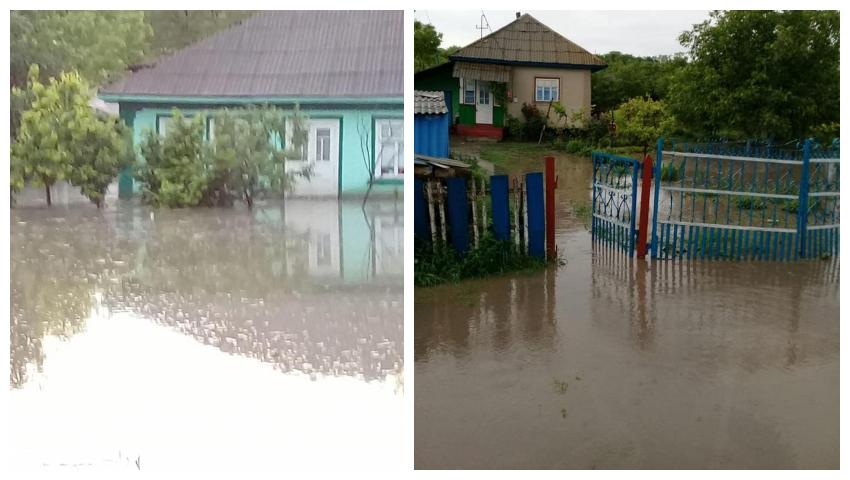 Foto: Case inundate, drumuri deteriorate şi copaci doborâţi la pământ, în urma ploilor de ieri