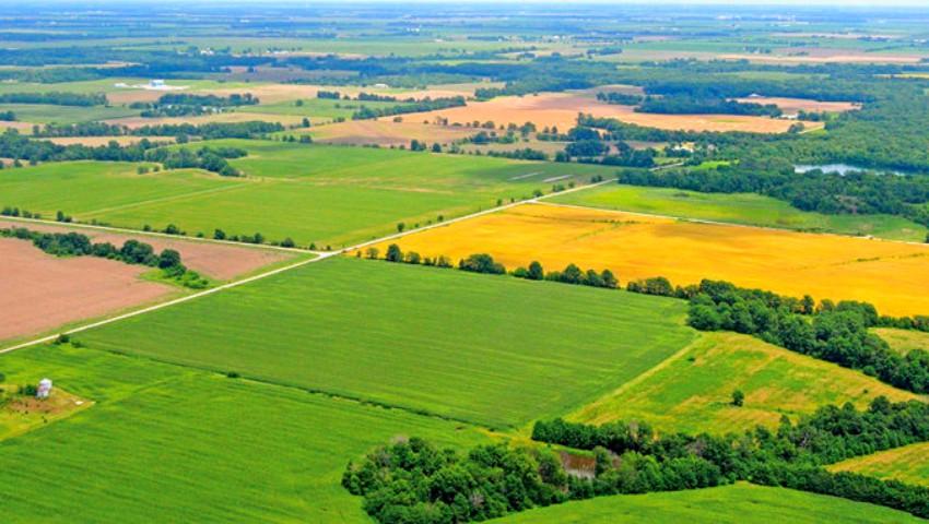 Foto: RISE: Străinii cumpără pământul din Moldova, bucată cu bucată, chiar dacă legea interzice