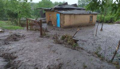 Gospodării din nordul Moldovei, înecate în ape și mâl