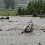 Foto: Grindină și inundații masive în satul Opaci
