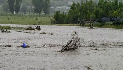 Grindină și inundații masive în satul Opaci