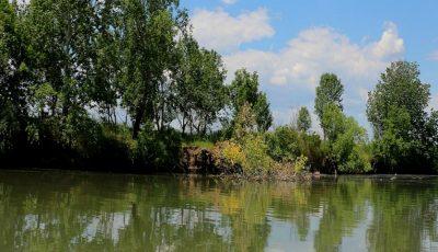 Un minor de 14 ani a ajuns la reanimare, după ce a încercat să sară în râu de pe creanga unui copac înalt