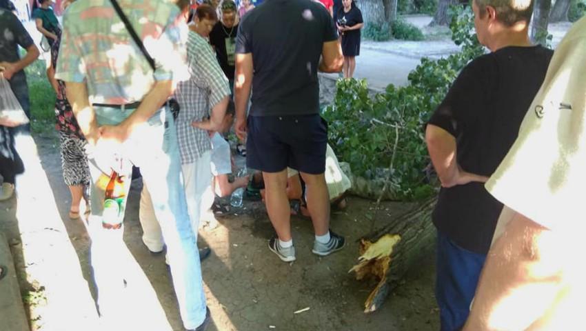 Foto: Un bărbat din capitală, rănit grav după ce un copac a căzut peste el