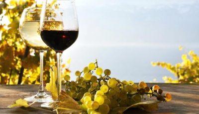 Vinurile din Moldova au fost apreciate cu medalia de platină la un concurs specializat din Japonia