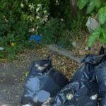 Foto: În Italia, un moldovean a fost amendat cu 500 de euro, pentru că a aruncat sacii cu gunoi pe marginea drumului