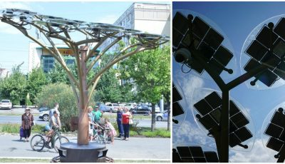 Doi arbori solari fotovoltaici au fost instalați în Chișinău. Foto!