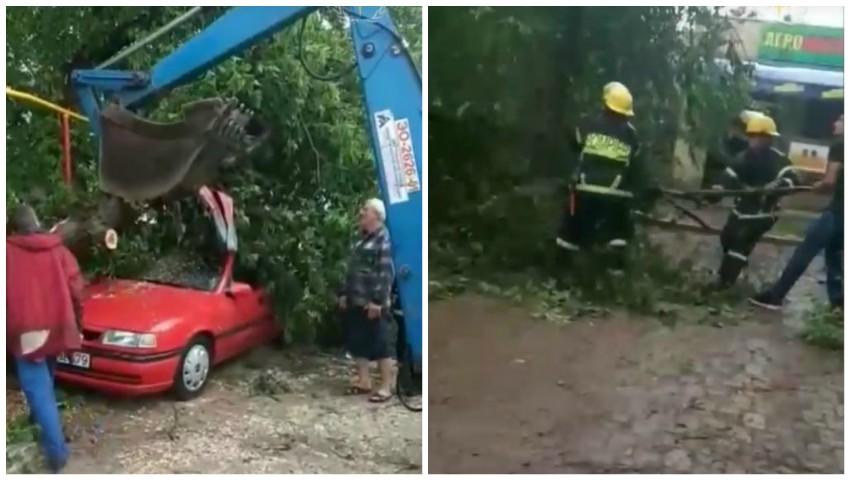 Foto: Vijelia a făcut dezastru în sudul țării: copaci doborâți și case avariate. Video!