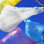 Foto: Astăzi este marcată Ziua Internațională FĂRĂ pungi de plastic!