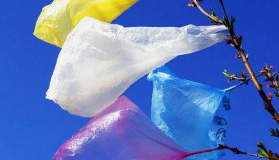 Astăzi este marcată Ziua Internațională FĂRĂ pungi de plastic!