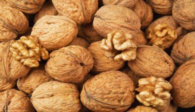 În Moldova se așteaptă o recoltă bogată de nuci