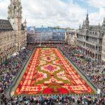 Foto: Covor de flori în piața din Bruxelles. Foto!