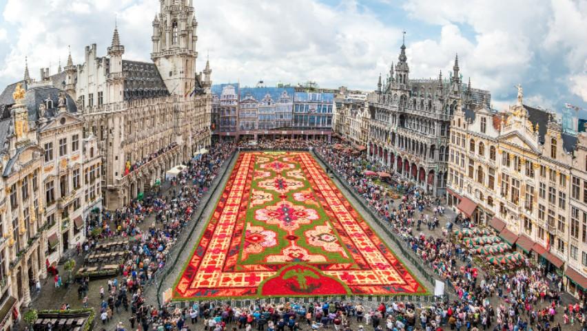 Covor de flori în piața din Bruxelles. Foto!