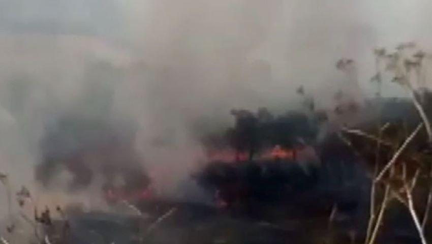 Foto: O pădure din raionul Rezina a luat foc