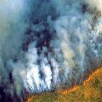 Foto: Trist. Incendii devastatoare în Jungla Amazoniană