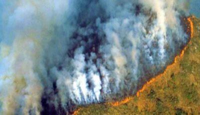 Trist. Incendii devastatoare în Jungla Amazoniană