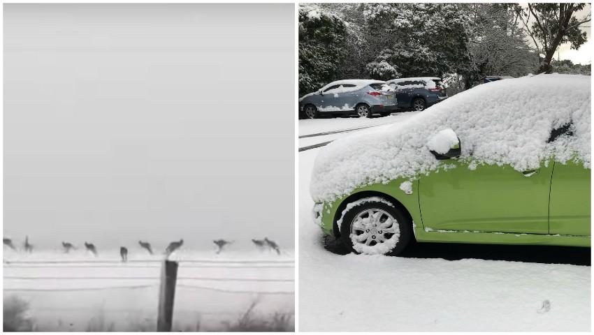 Foto: Video. În Australia ninge ca-n povești, pentru prima oară după aproape două decenii