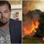 Foto: Leonardo DiCaprio a donat 5 milioane de dolari pentru salvarea pădurii amazoniene
