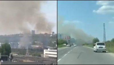 Arde pădurea din sectorul Petricani al Capitalei. Video!