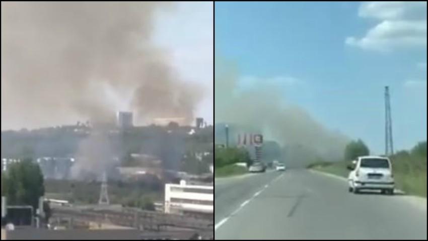 Foto: Arde pădurea din sectorul Petricani al Capitalei. Video!