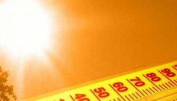 Cod galben de caniculă, secetă și pericol excepțional de incendii, până la începutul lunii septembrie