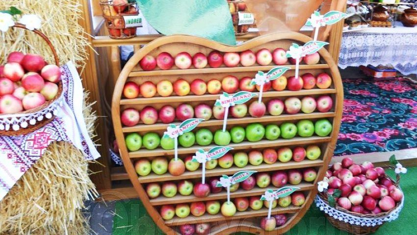 Foto: La Soroca, se va desfășura a IX-a ediție a Festivalului Național al Mărului