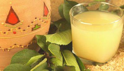 Un pahar de borș pe zi ține la distanță anemia și bolile de ficat