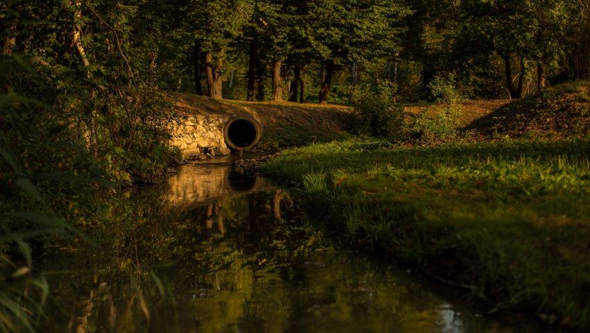 Foto: E septembrie la Dendrariu! Imagini spectaculoase surprinse de fotograful Sergey Bobr