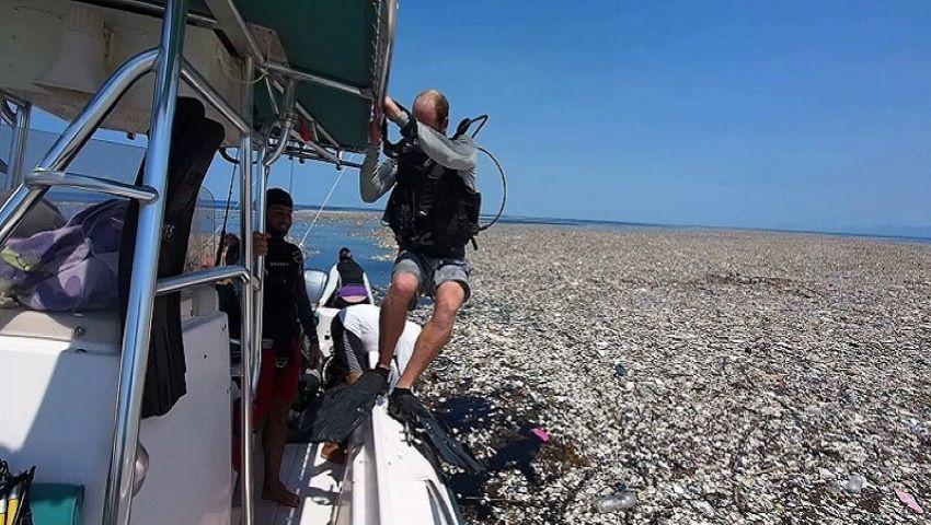 """Foto: Dezastru! O """"mare de plastic"""" a fost descoperită în Caraibe"""