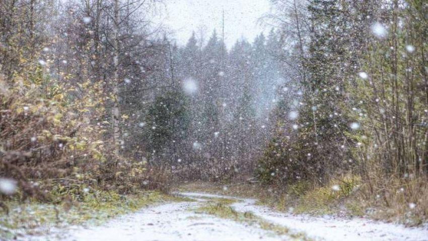 Ninge în România. Prima zăpadă din acest sezon a căzut deja