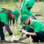 Foto: Peste 1.500 de copaci vor fi plantați, sâmbătă, în fâșia de protecție a râului Bâc! Primăria municipiului Chișinău invită cetățenii să se alăture acțiunii!