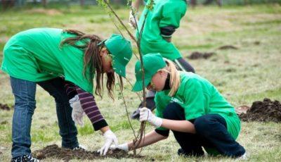 Peste 1.500 de copaci vor fi plantați, sâmbătă, în fâșia de protecție a râului Bâc! Primăria municipiului Chișinău invită cetățenii să se alăture acțiunii!
