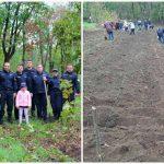 Foto: Angajații Poliției, împreună cu familiile lor, au plantat astăzi sute de arbori și arbuști pe întreg teritoriul țării