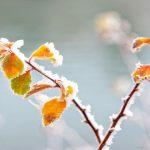 Foto: Val de aer polar. Temperaturile vor coborî la -5 grade celsius, în Moldova