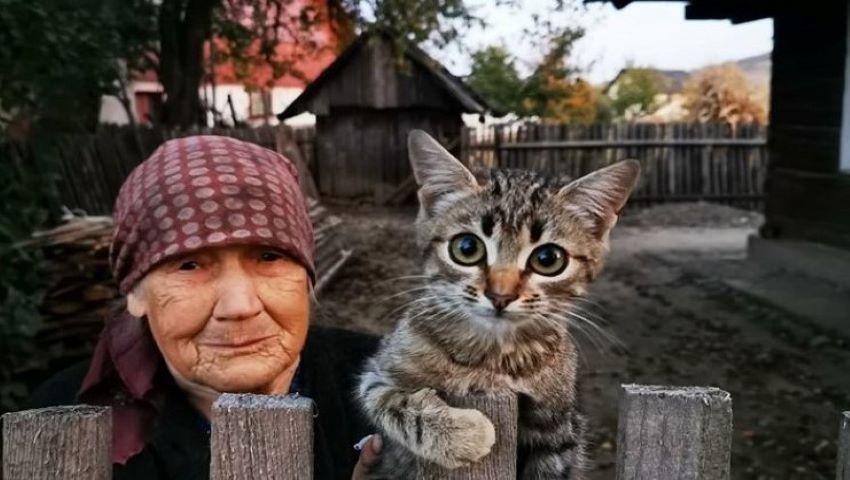 Foto: Bătrânica și pisica. Povestea fotografiei virale care a sensibilizat internauții